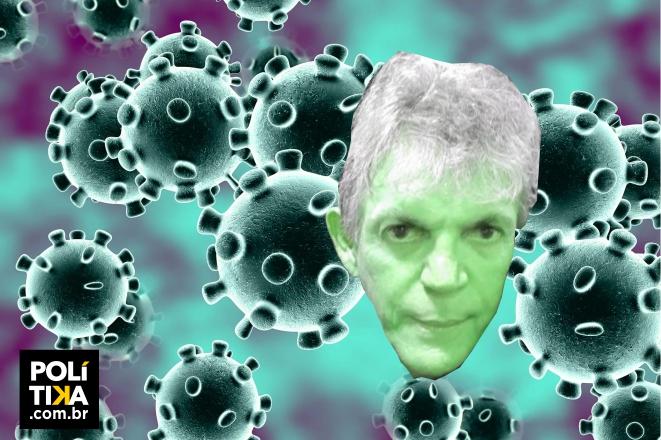 girassol virus